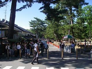 東大寺へ.jpg