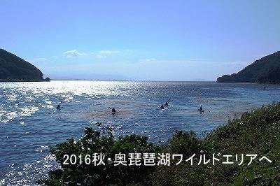 400奥琵琶湖ワイルドエリア.jpg