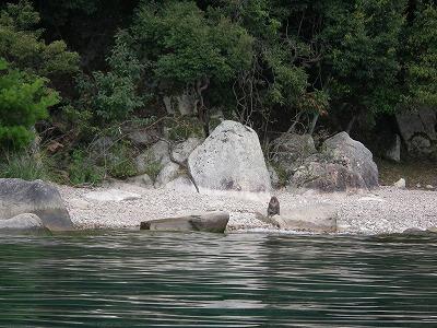 奥琵琶湖カヤック