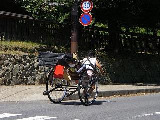 奈良観光 人力車.jpg