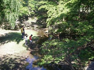 川原で人と鹿が.jpg