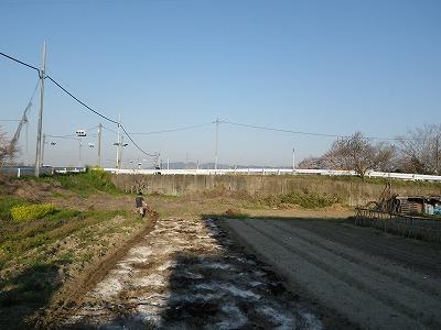 IMGP1659.jpg